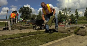 Langley 07/15/06 Spencer Jeffrey works against the clock as he does the Sod laying portion of the testing at the Horticulture centre in Langley.  Please see story by Whysall  Ward Perrin/Vancouver Sun  SUN0715F-Landscapers  [PNG Merlin Archive]
